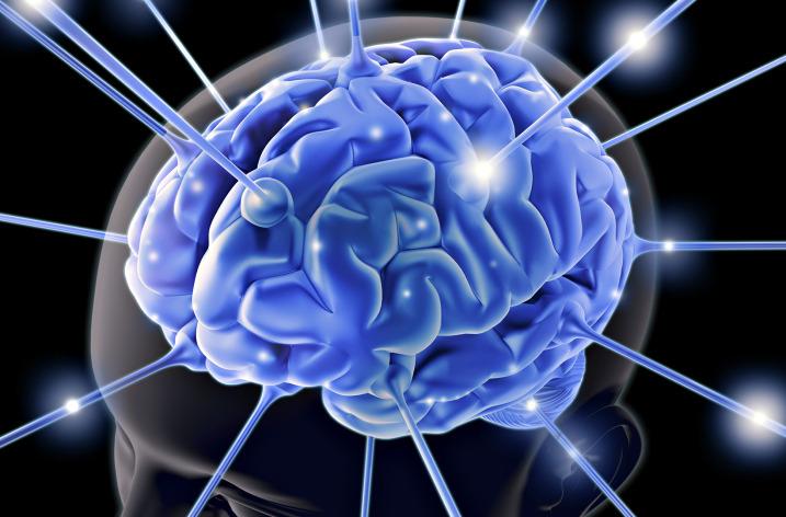 Un secret de negocieri – neuronii oglinda