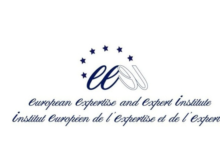The European Expertise and Expert Institute