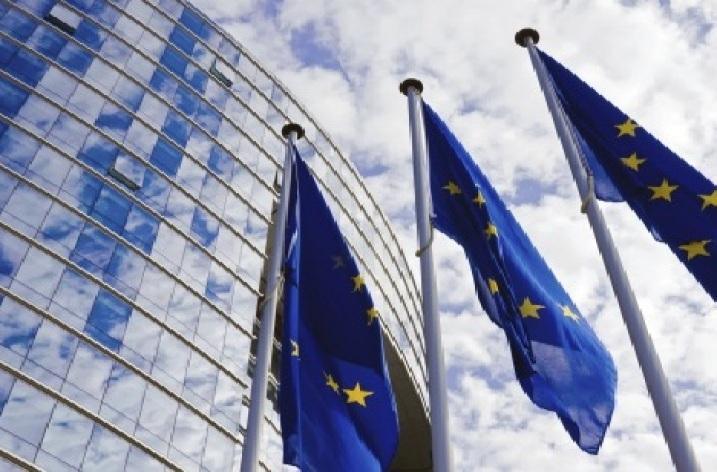 Actele juridice şi procedurile de adoptare ale Uniunii Europene – coordonare şi cooperare interinstituţională