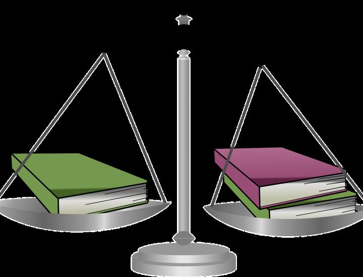 Jurisprudenţă internă şi externă cu privire la principiul proporţionalităţii în materia achiziţiilor publice
