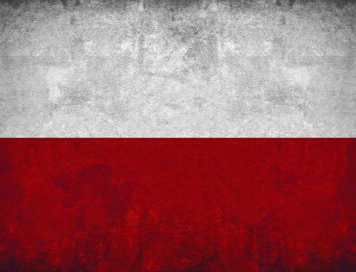 Studiu de caz. Criza politică din Polonia: este statul de drept pus în dificultate?