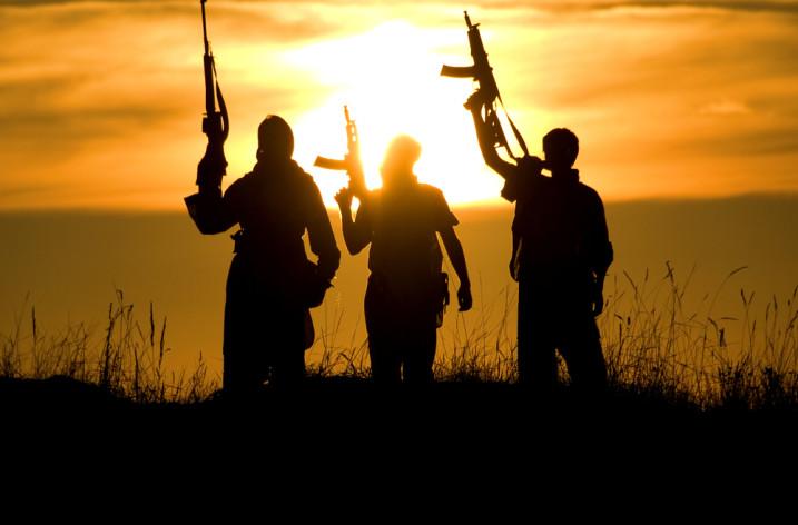 Terorismul. Tipuri de  terorism