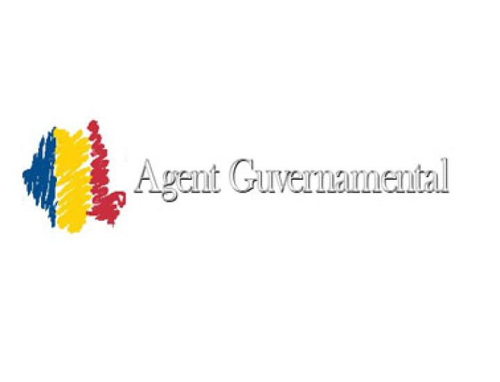 Instituţia agentului guvernamental