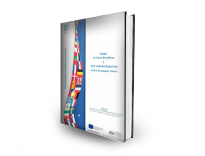 Am lansat ghidul Institutului European de Expertiză și Experți (EEEI) in limba romana