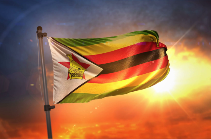 Analiza panoramica privind drepturile constitutionale ale omului in Republica Zimbabwe