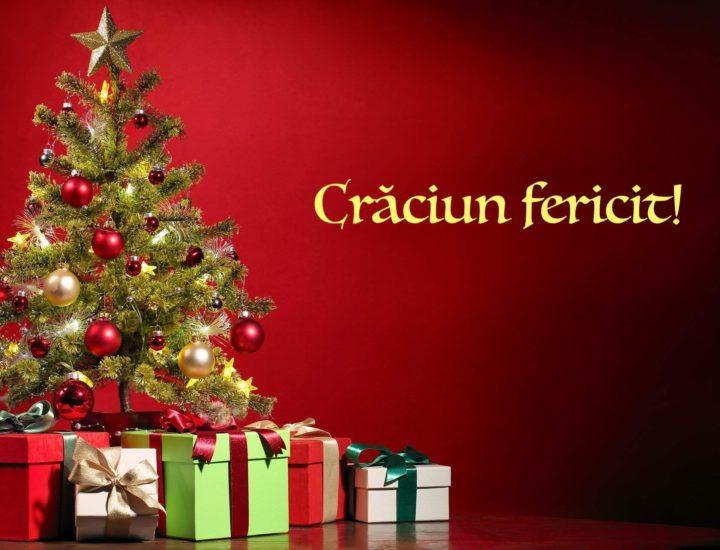 Echipa ABC Juridic vă urează sărbatori fericite alături de familie și de cei dragi și un an nou prosper, ambițios si presărat cu reușite!
